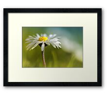 It must be love.... yes, it must be love... Framed Print