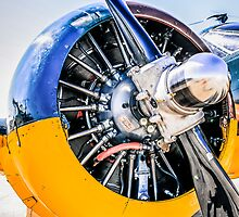 Pratt Whitney R-985 Wasp radial engine by chris-csfotobiz
