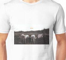 FOXING- album artwork Unisex T-Shirt