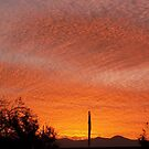 sunset in midvale by Kevin McGeeney