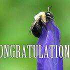 Bee On Budding Iris - Congratulations Card by Jean Gregory  Evans