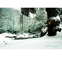 Stream-side Wintry Evening  Photographic Print