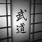 Budo (Martial Arts) - Black and White 02  by soniei