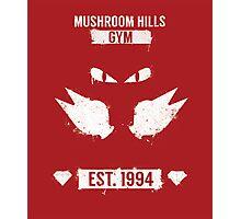 Mushroom Hills Gym Photographic Print