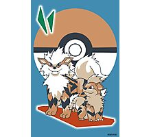Pokemon Growlithe & Arcanine Photographic Print