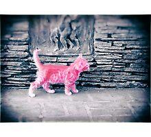 Tiny Pink Panther Photographic Print