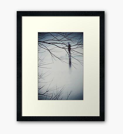 Clear Framed Print