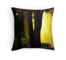 Glowing Wall Throw Pillow