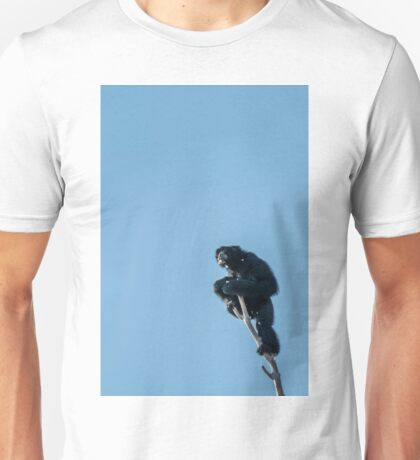 of all he surveys Unisex T-Shirt