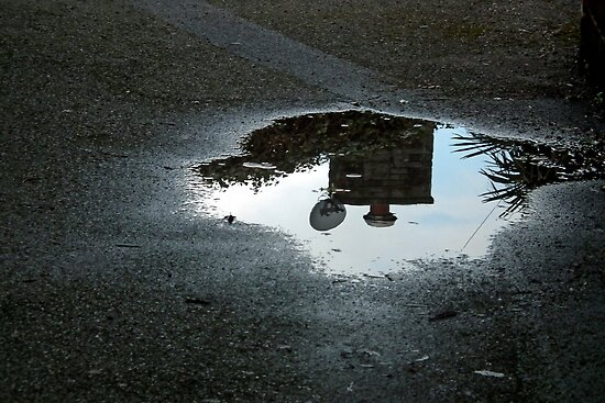 Just A Puddle..... by lynn carter