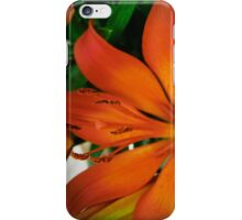 What's up Tiger Lily? iPhone Case/Skin