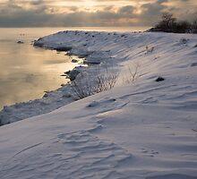 Icy, Snowy Lake Shore Morning by Georgia Mizuleva