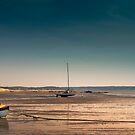 Sailboats at Low Tide by Artist Dapixara