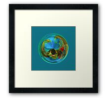 Reflections in the globe Framed Print