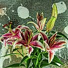 The Painting & the Lillies by karo