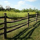 A Mount Vernon Fence by Cora Wandel