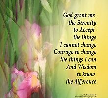 Serenity Prayer Pink and Red Irises 2 by serenitygifts
