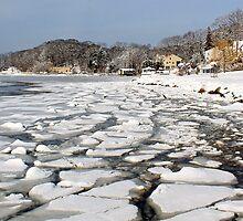 Ice Harbor  by LisaThomasPhoto