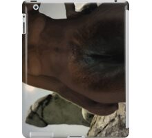 frigid iPad Case/Skin