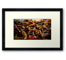 Hot N Spicy! Framed Print