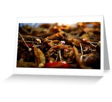 Hot N Spicy! Greeting Card