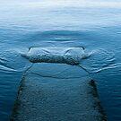 Loch Lomond Jetty by Anne Gilbert