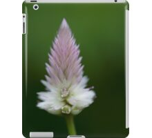 Traicionar iPad Case/Skin