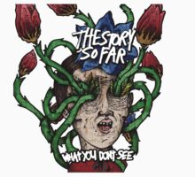 The Story So Far - What You Don't See by Daryl Chan