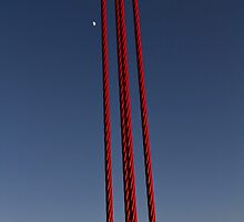 Golden Gate Cable With Moon by lifeinfineart