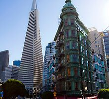 San Francisco Baby by lifeinfineart