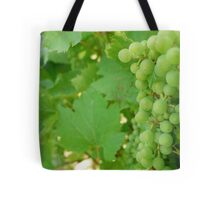 When it's not WINTER...an inspiREDmaple perspective Tote Bag