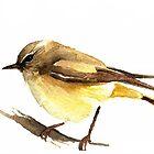 Yellow Thornbill by Denise Faulkner