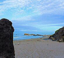Beach Heaven at Carpinteria by Rosalee Lustig
