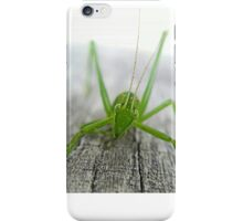 What You Looking at ? iPhone Case/Skin