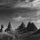 High Desert Havens by Corri Gryting Gutzman
