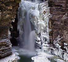 Winter at Watkins Glen by Kathy Weaver