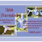 Shiloh (Peacemaker) by aprilann