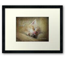Ode to a sleepy cat Framed Print