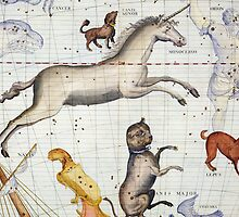 Constellation of Monoceros with Canis Major and Minor by Bridgeman Art Library