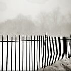 Foggy Fence by chrstnes73
