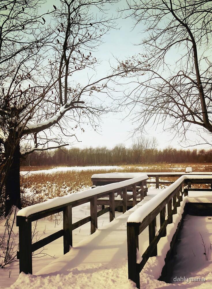 Wintertime At Sheldon Marsh - Overlook by Shawna Rowe