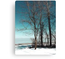 Frozen Lake Erie At Old Woman Creek Canvas Print