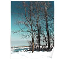 Frozen Lake Erie At Old Woman Creek Poster