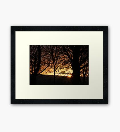 At the edge of Fangorn Forest - 1 Framed Print