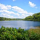 Shepherd Mountain Lake by Susan S. Kline