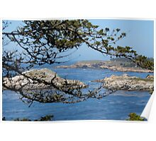 Pebble Beach Landscape Poster