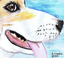 Benny's Snout by Alejandro Cuadra