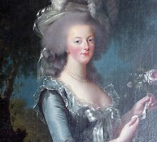 Marie Antoinette, Queen of France by shutterbug941