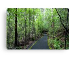 Green Track Canvas Print
