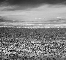 Rocky Beach on the Dry Lake by Corri Gryting Gutzman